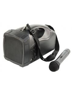 Sistema audio mobile HOLLYWOOD PSS BLUETOOTH con amplificatore USB e microfono wireless